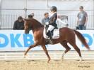 Foto: Pony-Royal